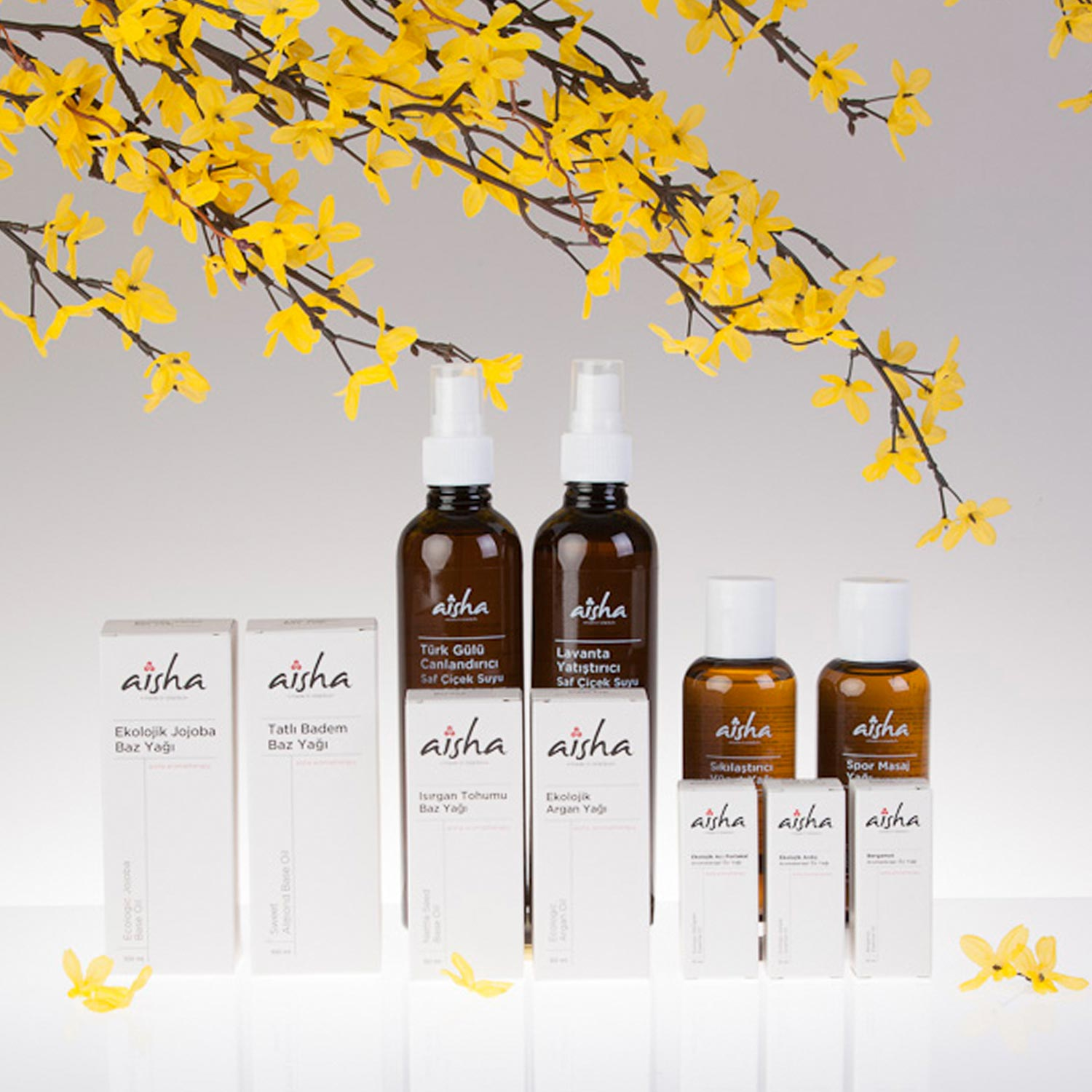 Miscellaneous Aisha aromatherapy Packaging 02